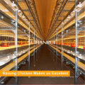 Tianrui Design Broiler Battery Cage for Manufacturing Metal Industrial Chicken Coop