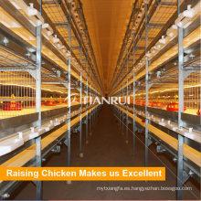 Jaula de la batería del asador del diseño de Tianrui para la fabricación de la gallina de pollo industrial del metal