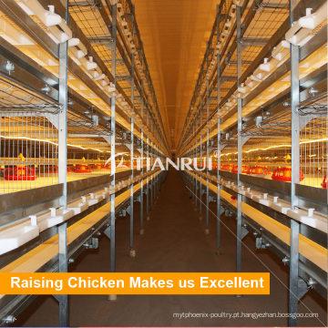 Gaiola de bateria de frangos de corte de Tianrui Design para fabricação de galinheiro de gaiola Industrial de Metal