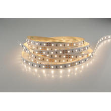 Super Bright SMD 2835 SMD LED WW CW LED Strip