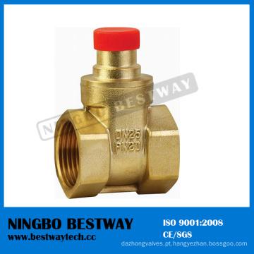 Fornecedor rápido da válvula de porta de bronze de OS Y Stype (BW-G09)
