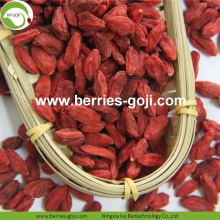 Factory Supply Fruit Packing Herbal Type Goji Berries