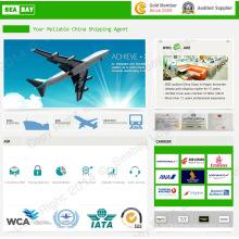 Transporte aéreo / frete / remessa de cargas para Bagdá Iraque