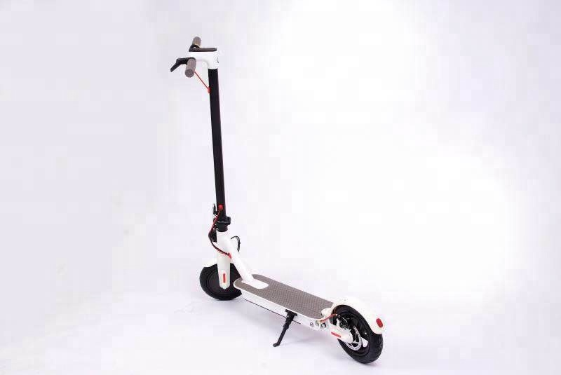 Skate board Scooter Electric