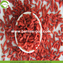 Factory Supply Fruits Healthy 220 280 Goji Berry