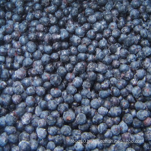 IQF Freezing/Freeze-Dried Organic Blueberry Zl-001 4