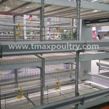 Sistema de gaiolas para aves de capoeira