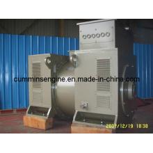 À vendre Alternateur alternatif haute tension de 750 tr / min (6302-8 1120kw / 1200kw)