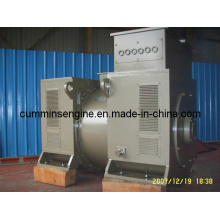 for Sale 750rpm High Voltage AC Alternator (6302-8 1120kw/1200kw)