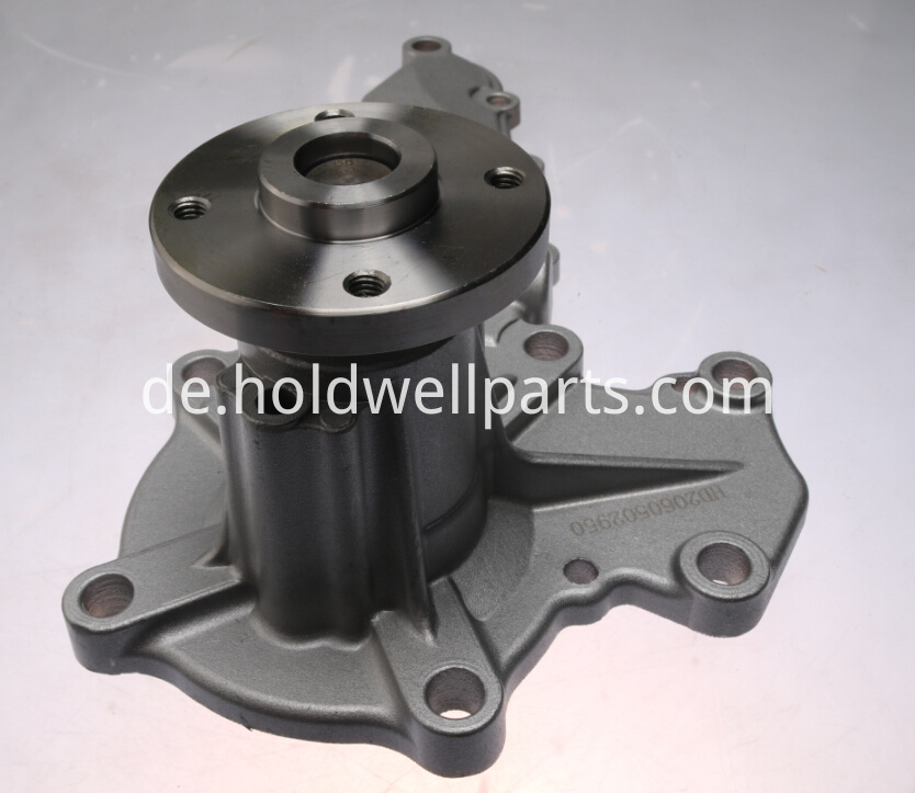 Diesel Engine Water Pump 3