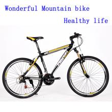 2016 Beautiful V Brake Mountain Bicycle (FP-MTB-ST048)