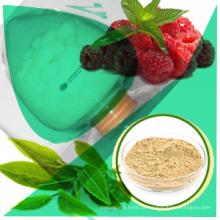 0. Qualificado e Direct Supply Citrus Aurantium Plant Extract