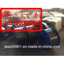 Steel Wire /Spring Wire /Oil Temper Wire /Spheroidizing Wire/Stainless Steel Wire