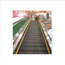 Indoor Moving Walks mit guter Qualität Passagier Elevator Sum-Elevator