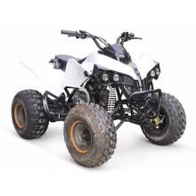 EPA 110CC квадроцикл Madix-6
