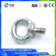 2015 Chinese supplier Din580 stainless steel anchor bolt