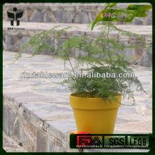 Pots de fleurs de fibres végétales écologiques