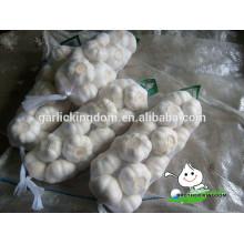 Garlic with GAP/Fresh Garlic/White Garlic