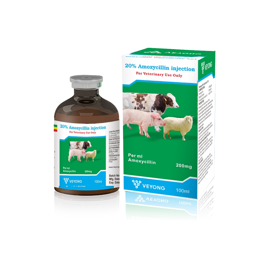 Amoxicillin 20% Injection for Veterinary Use