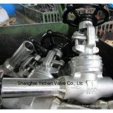 Válvula de compuerta de acero Hastelloy aleación