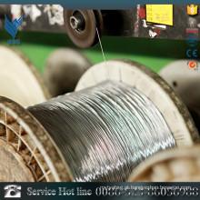 Amostras grátis feitas em China 1mm fio de aço