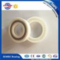 High Speed Single Row Ball Bearing (6009) Ceramic Bearing