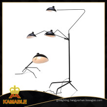 Modern Interior Metal Floor Lighting (ML21178-3)