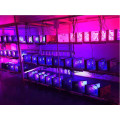 Full Spectrum Best 600W Led Grow Light