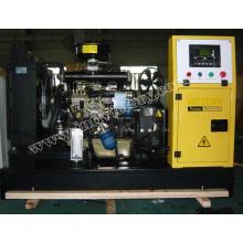 10kVA ~ 50kVA Yangdong Engine Diesel Generator Set