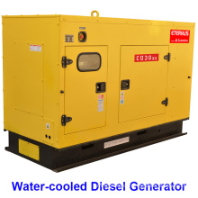 Engine Driven Generator 40kw Diesel (BU30KS)