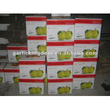 New Crop Grade A Fresh Fresh Green Pomelo Price