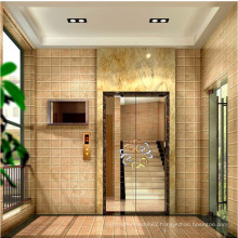 Machine Roomless Glass Small Cheap Home Lift