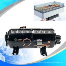Mini congélateur compresseur pour congélateur à plaque froide congélateur frigorifique chambre froide salle de refroidissement