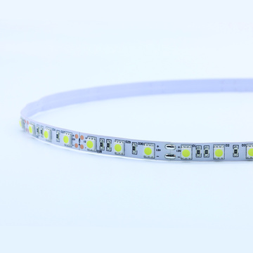 Strip light 5050SMD colore bianco 300led