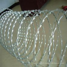 Fil à barbelé galvanisé pour protection de clôture