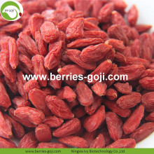 En gros Fruit en vrac Faible Pesticide Goji Berry