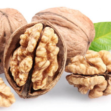 cheap100% organic walnuts in shell price