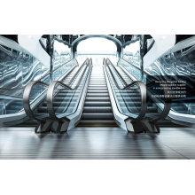 Movimentação slim da escada rolante VVVF do passageiro