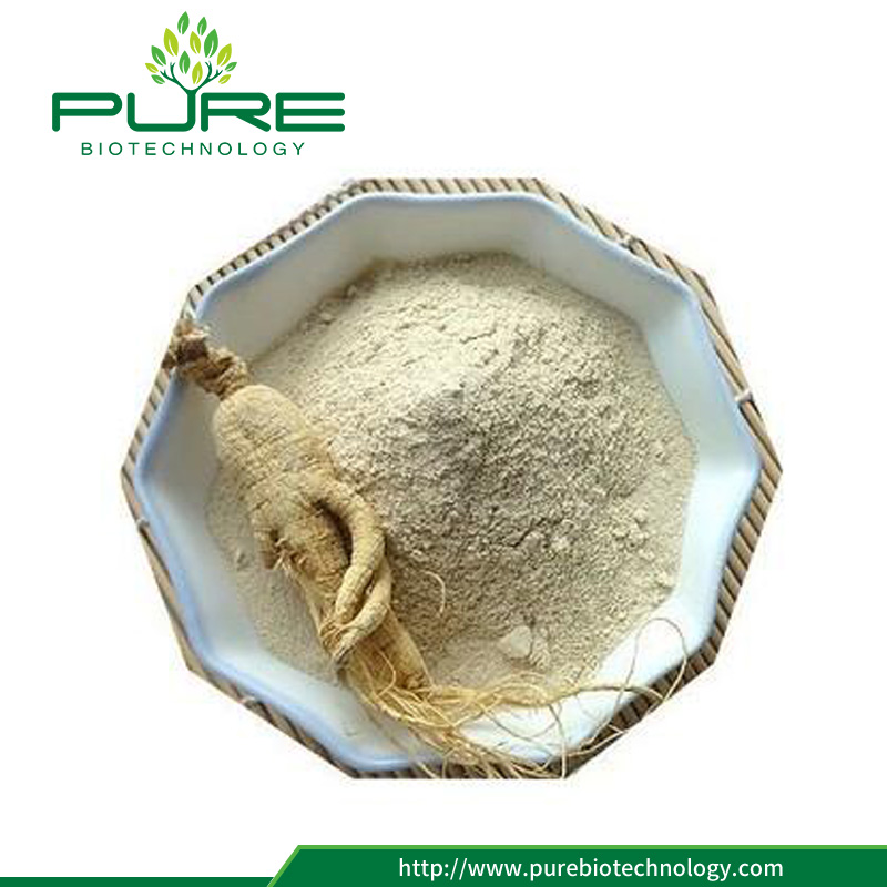 Panax ginseng root powder