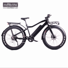 Electro bike 8fun motor electric bike,48V550W Hot sale ebike