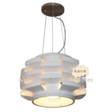 Modern creative ceiling Pendant Light Indoor Lighting