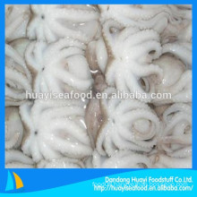 various size new landing frozen baby octopus