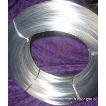 Professional Roll Type Low Carton Steel Electro-galvanized Iron Wire Manufacturer