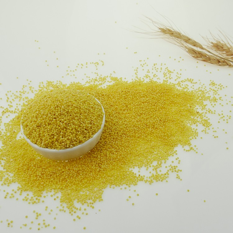 China Hulled Yellow Millet New Crop