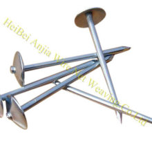 Smooth Body Galvanized Umbrella Head Roofing Nail