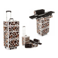 Salable Cosmetic Train Case (HX-A0727)