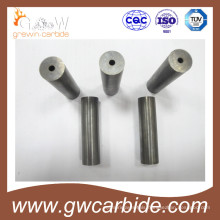 Yg 25c Cold Forging Dies for Stamping