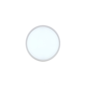 22W IP65 round LED wall lamp