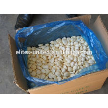IQF frozen fresh garlic price