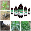 Inoculante de abono agrícola Inoculante bioorgánico